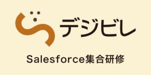 デジビレのSalesforce集合研修